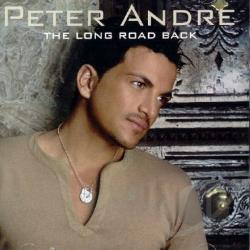 Peter Andre Never Gonna Give You Up Mp3 Download And Lyrics