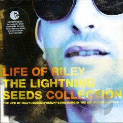 lightning seeds sense mp3