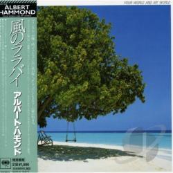 Albert Hammond When Im Gone Mp3 Download And Lyrics